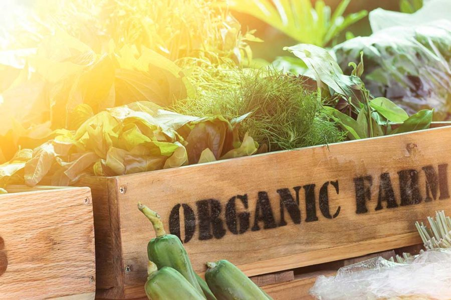 Living The Organic Life But On A Budget!